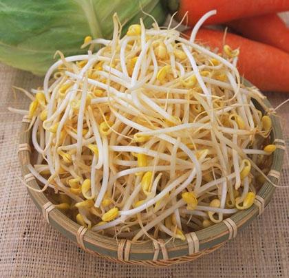 Cách làm giá đỗ sạch từ đậu xanh tại nhà không bị rễ dài